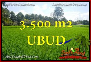 Beautiful LAND SALE IN Ubud Gianyar BALI TJUB660
