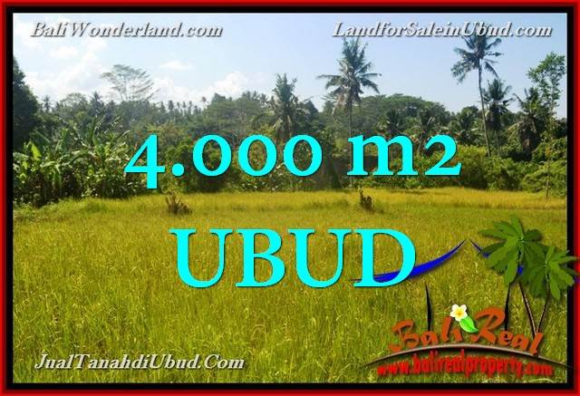 Exotic PROPERTY 4,000 m2 LAND IN UBUD FOR SALE TJUB661