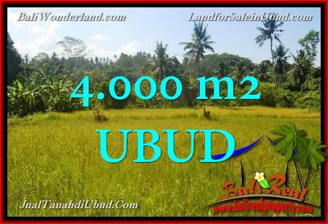 Magnificent 4,000 m2 LAND SALE IN UBUD BALI TJUB661