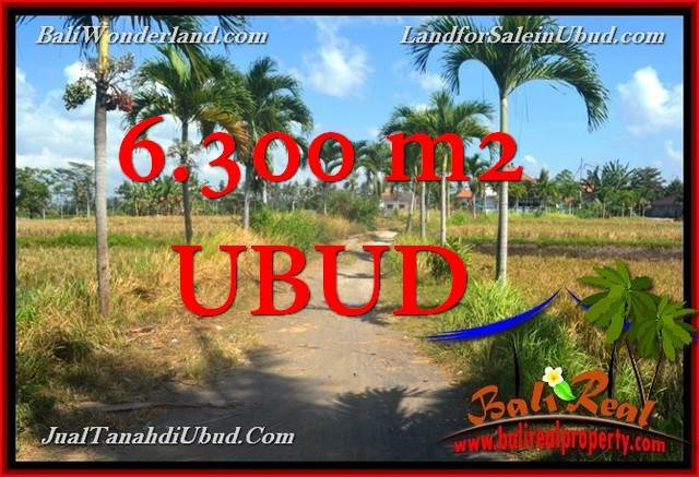 Affordable PROPERTY LAND FOR SALE IN Sentral Ubud TJUB662