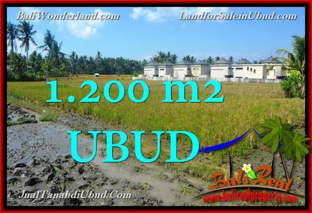Exotic PROPERTY 1,200 m2 LAND IN Sentral Ubud FOR SALE TJUB663