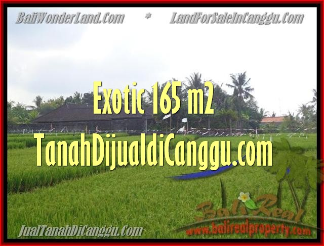 Exotic PROPERTY 1.650 m2 LAND FOR SALE IN Canggu Cemagi TJCG158