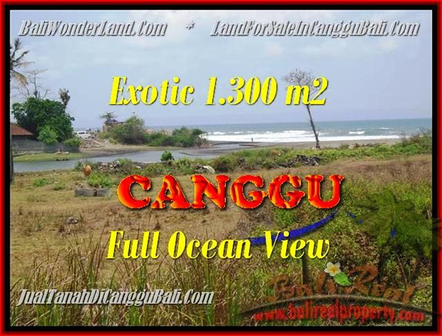 Magnificent PROPERTY CANGGU 1.300 m2 LAND FOR SALE IN BALI