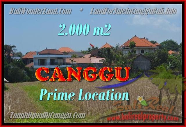 Magnificent 2.000 m2 LAND FOR SALE IN CANGGU BALI TJCG167