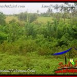 Magnificent 9,190 m2 LAND FOR SALE IN TABANAN Selemadeg Timur TJTB368
