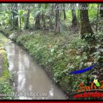 Exotic PROPERTY LAND IN Tabanan Selemadeg Timur BALI FOR SALE TJTB369