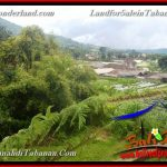 Affordable 750 m2 LAND FOR SALE IN TABANAN Bedugul BALI TJTB370