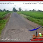 Affordable PROPERTY Tabanan Selemadeg 2,280 m2 LAND FOR SALE TJTB374