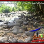 FOR SALE Affordable PROPERTY LAND IN Tabanan Selemadeg BALI TJTB377
