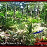 Affordable PROPERTY 4,500 m2 LAND SALE IN Tabanan Selemadeg BALI TJTB380
