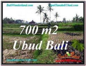Beautiful PROPERTY 700 m2 LAND SALE IN SENTRAL UBUD TJUB666