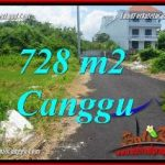 Affordable PROPERTY 728 m2 LAND SALE IN CANGGU BRAWA TJCG222