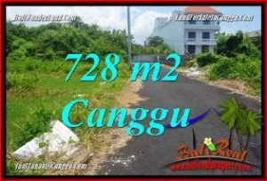Affordable PROPERTY 728 m2 LAND SALE IN CANGGU BRAWA TJCG222