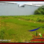 FOR SALE 728 m2 LAND IN CANGGU BRAWA BALI TJCG222