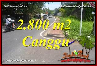 Magnificent PROPERTY LAND SALE IN CANGGU TJCG223
