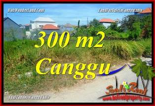 Beautiful PROPERTY CANGGU BRAWA 300 m2 LAND FOR SALE TJCG225
