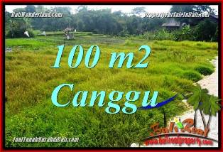 Exotic 100 m2 LAND SALE IN CANGGU BALI TJCG227
