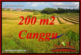 Affordable PROPERTY 200 m2 LAND IN CANGGU BALI FOR SALE TJCG228