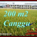 FOR SALE Affordable PROPERTY LAND IN CANGGU TJCG229