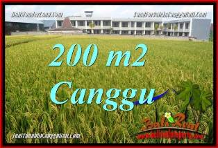 Affordable 200 m2 LAND IN CANGGU BALI FOR SALE TJCG229
