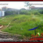 LAND FOR SALE IN CANGGU BRAWA TJCG229
