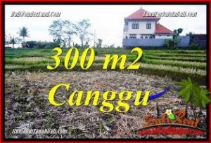 Exotic CANGGU PERERENAN BALI LAND FOR SALE TJCG230
