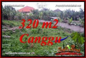 Beautiful PROPERTY 320 m2 LAND FOR SALE IN CANGGU BALI TJCG231