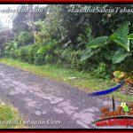 FOR SALE Beautiful 3,000 m2 LAND IN Tabanan Selemadeg BALI TJTB366