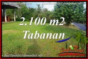 FOR SALE Magnificent 2,100 m2 LAND IN TABANAN SELEMADEG BALI TJTB393
