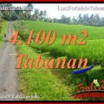 Affordable PROPERTY LAND FOR SALE IN TABANAN BALI TJTB394