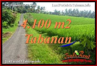 Magnificent TABANAN LAND FOR SALE TJTB394