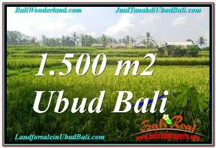 1,500 m2 LAND SALE IN UBUD TJUB667