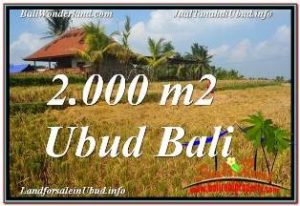 FOR SALE Exotic 2,000 m2 LAND IN UBUD BALI TJUB669