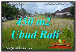 Exotic 450 m2 LAND FOR SALE IN SENTRAL UBUD TJUB671