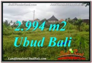 Exotic PROPERTY LAND IN UBUD BALI FOR SALE TJUB672
