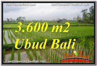 Beautiful 3,600 m2 LAND SALE IN UBUD TEGALALANG TJUB673