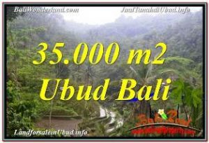 FOR SALE Beautiful PROPERTY LAND IN UBUD BALI TJUB674