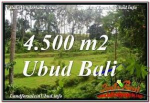 UBUD LAND FOR SALE TJUB675