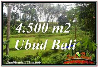 Exotic PROPERTY 4,500 m2 LAND IN SENTRAL UBUD BALI FOR SALE TJUB675