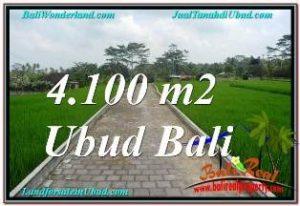 Affordable SENTRAL UBUD 4,100 m2 LAND FOR SALE TJUB676