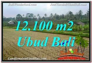 FOR SALE Beautiful PROPERTY 12,100 m2 LAND IN UBUD PAYANGAN BALI TJUB677
