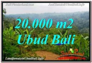 Magnificent 20,000 m2 LAND FOR SALE IN UBUD PAYANGAN BALI TJUB678