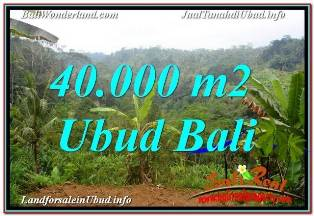 FOR SALE Beautiful 40,000 m2 LAND IN UBUD PAYANGAN TJUB679