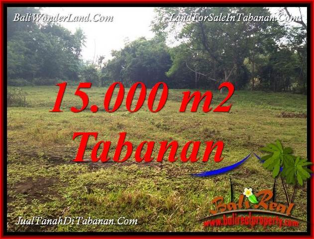 Affordable PROPERTY 15,000 m2 LAND FOR SALE IN TABANAN KOTA BALI TJTB381