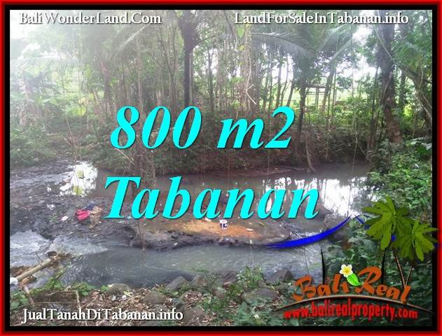 Beautiful TABANAN SELEMADEG 800 m2 LAND FOR SALE TJTB384