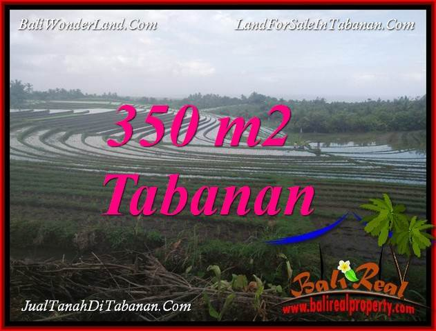 Beautiful TABANAN SELEMADEG BALI 350 m2 LAND FOR SALE TJTB386