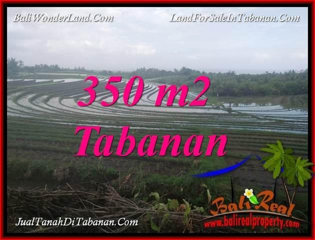 Magnificent 350 m2 LAND SALE IN TABANAN SELEMADEG TJTB386