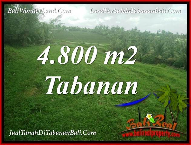 Affordable 4,800 m2 LAND IN TABANAN BALI FOR SALE TJTB387