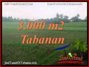 Affordable LAND IN TABANAN SELEMADEG FOR SALE TJTB389