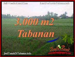 Affordable LAND SALE IN TABANAN BALI TJTB389